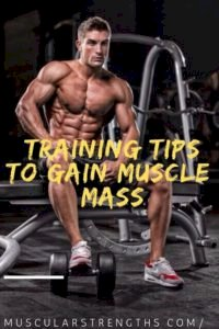 3 Actionable Tips to Improve Your Muscle Strength