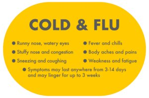 Prevent Cold together with Cough inward Winter Season